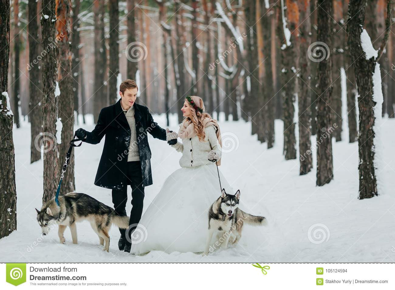 Cute couple walks on the trail in the snowy forest with two siberian dogs. Winter wedding. Artwork