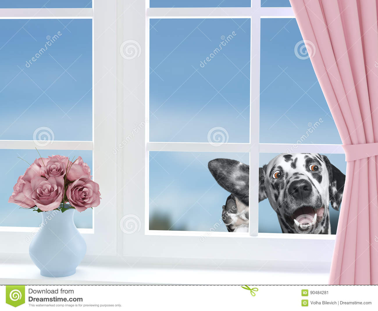 f57cb002 Cute Dog Looking Through The Window Stock Image - Image of hold ...