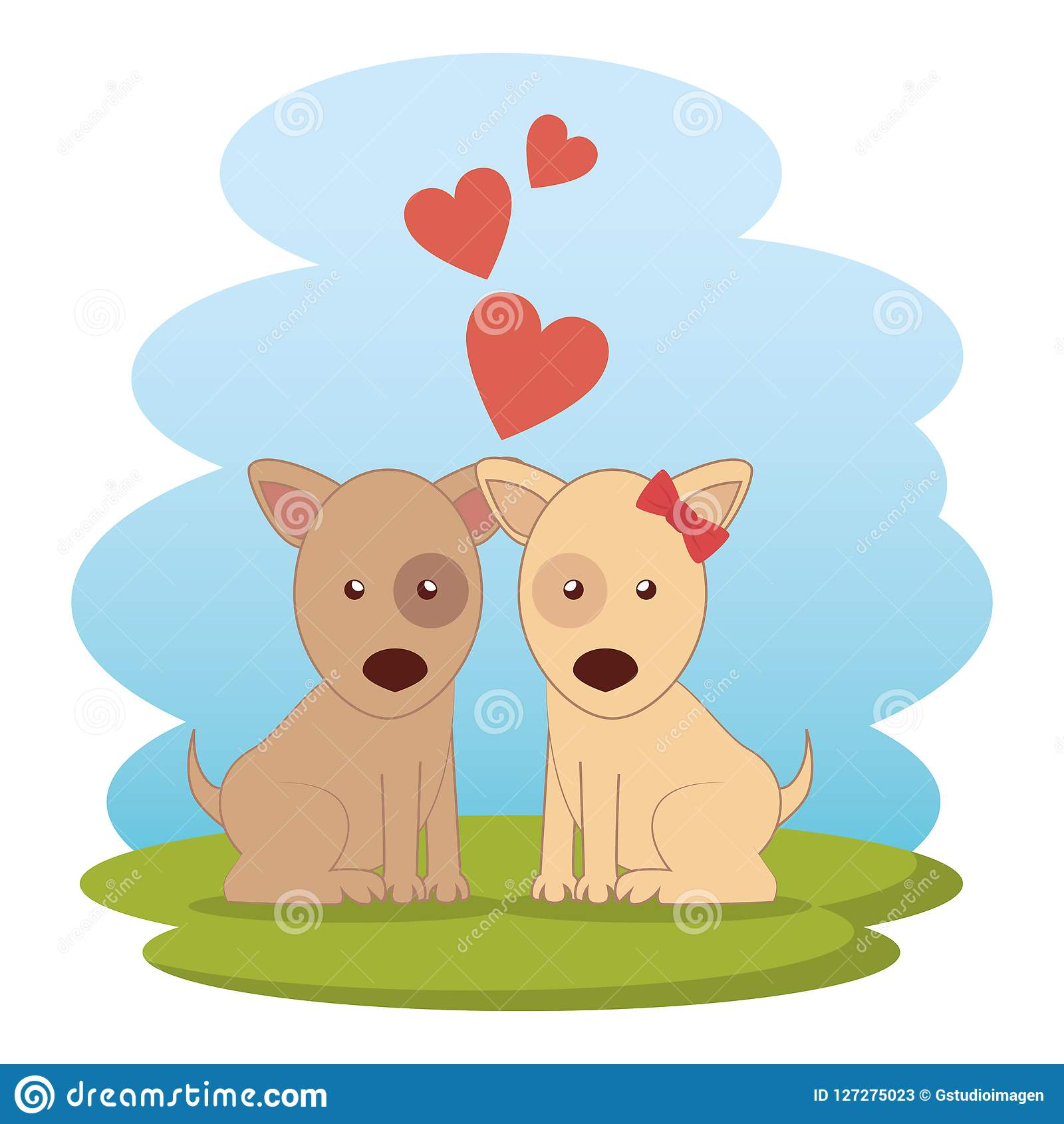 Cute dogs couple on grass