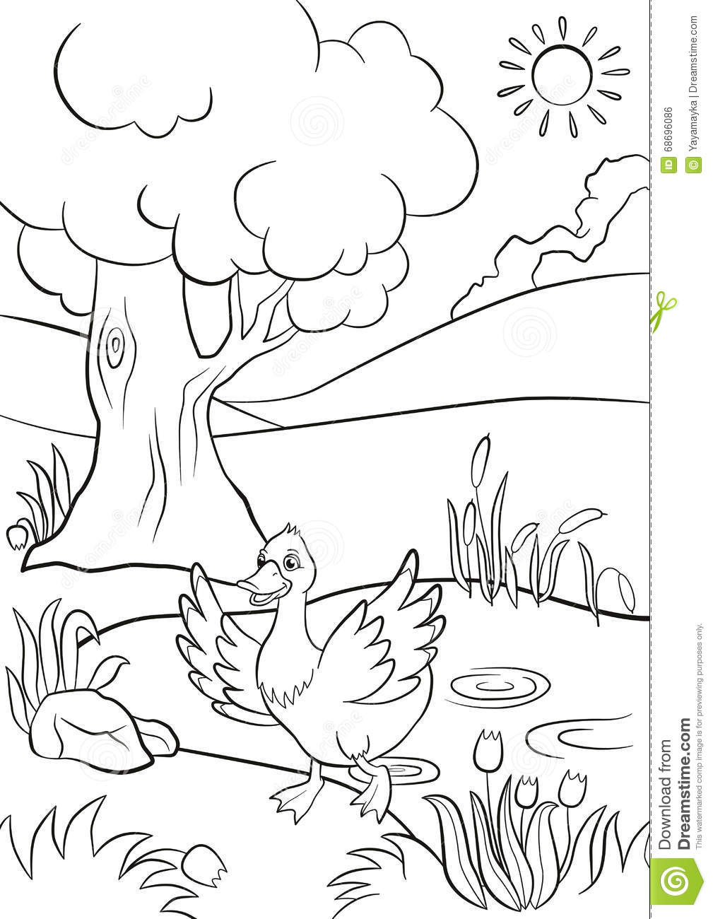 Free Coloring Pages Of A Frog In A Pond - Coloring Home | 1300x1009