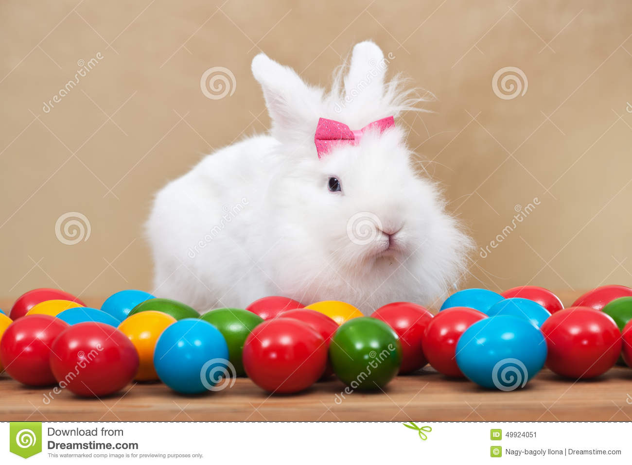 Cockatile Sitting On Easter Eggs 42