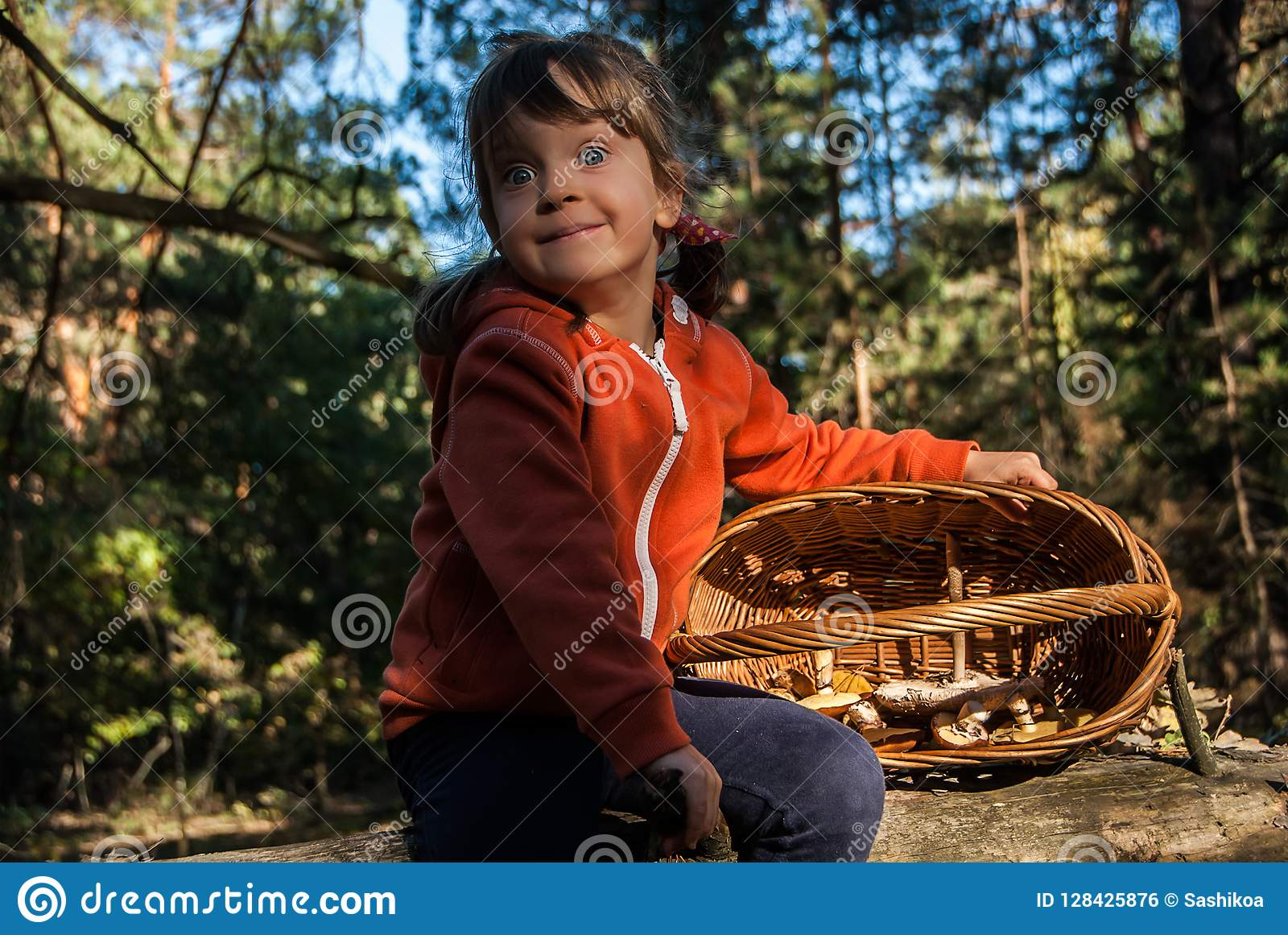Cute five-years-old girl sitting on a fallen tree in forest with mushrooms in basket.