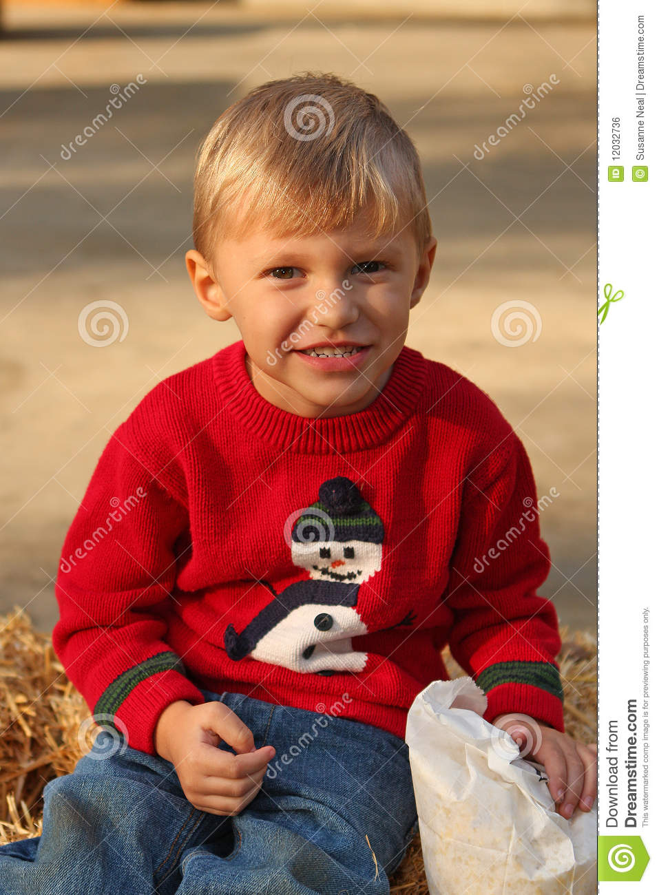 4 Year Boy Bedroom Decorating Ideas: Cute Four Year Old Boy In Christmas Sweater Stock Photo