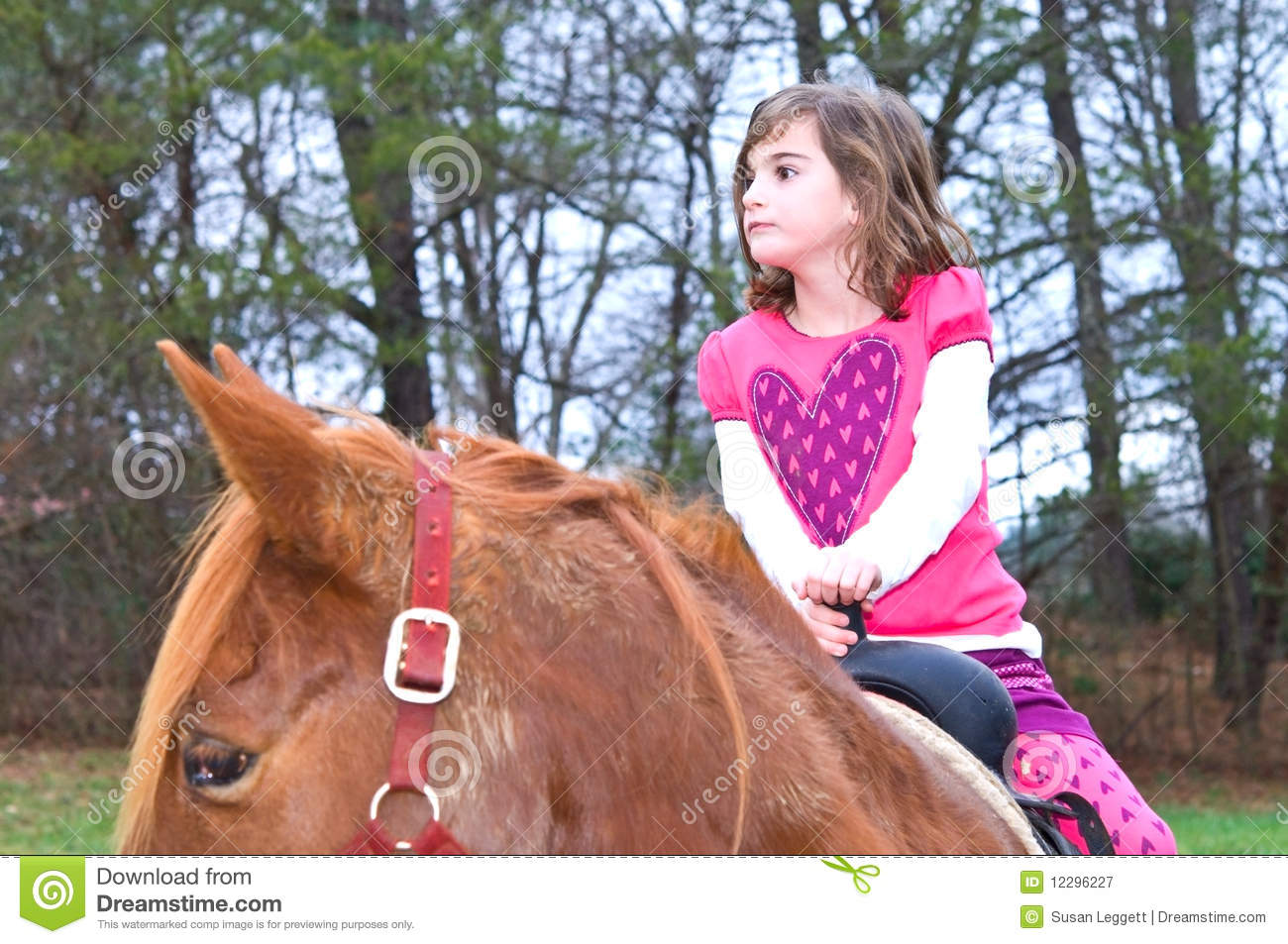 Cute Girl on a Horse