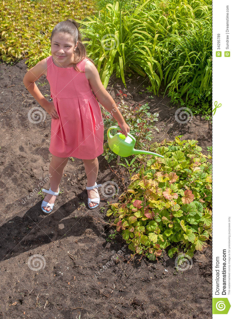 Cute Girl Watering Plants Royalty Free Stock Images ...