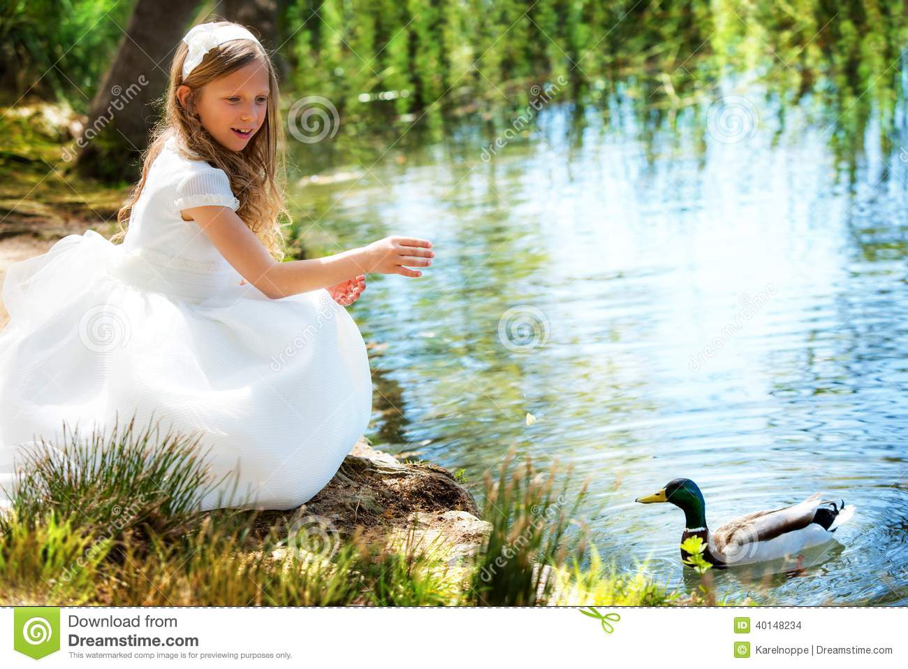 duck girls Live duck cam, duck care and feeding info, fun and games pages.