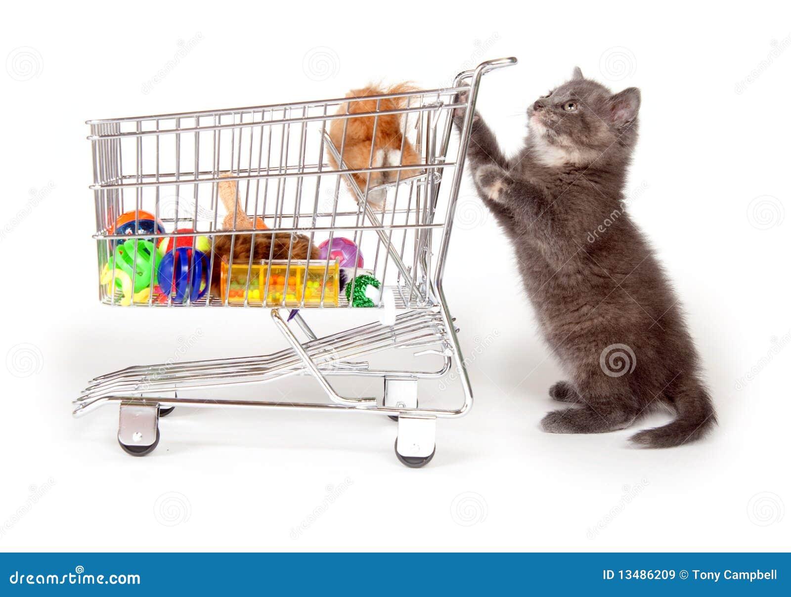 Plan Toys Grocery Cart 4