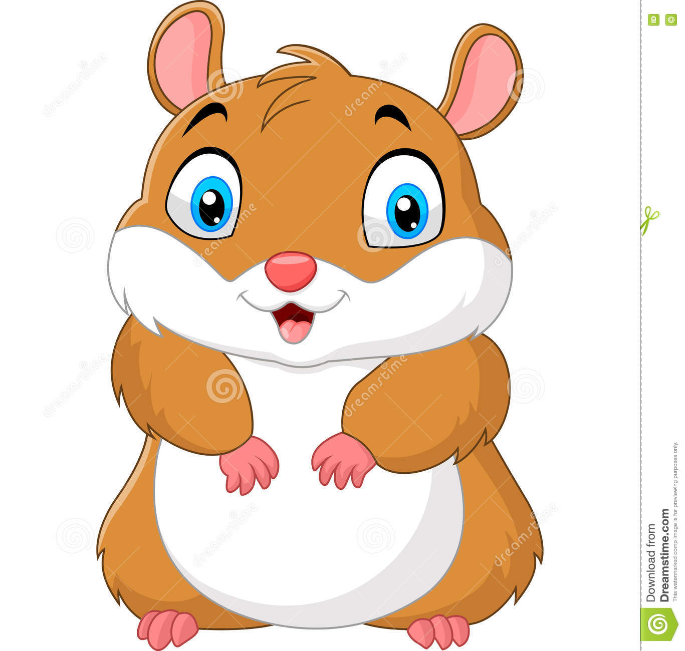 hamster dating website Looking for single russian women for marriage, love, and romance our free dating site is a great way to find an amazing women from russia, ukraine and other countries of the easten europe you don't need a credit card when you use our free dating site, our site is 100% free.