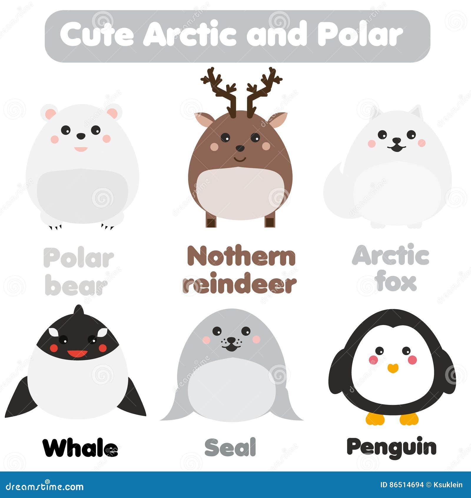 cute kawaii arctic and polar animals children style isolated