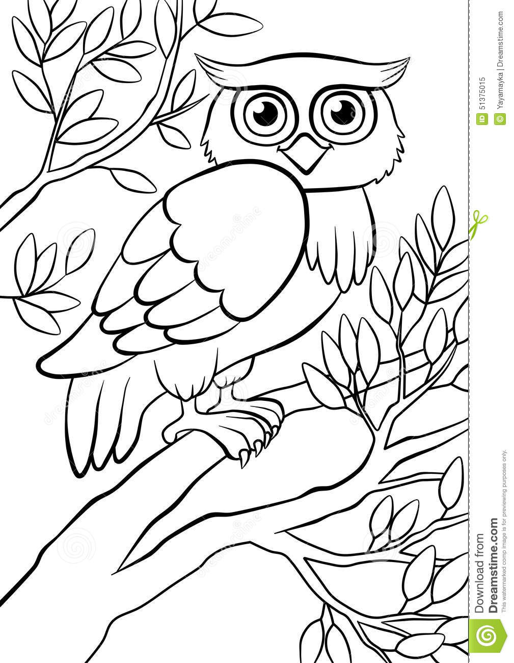 Cute kind owl sitting on the tree in the forest