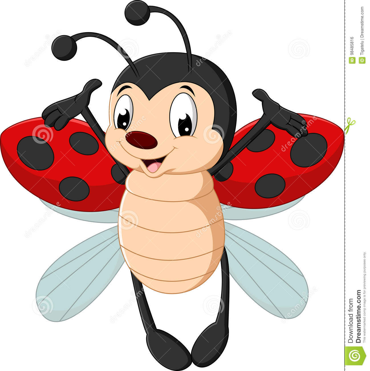 A Cartoon Ladybug cute ladybug cartoon stock vector. illustration of insect
