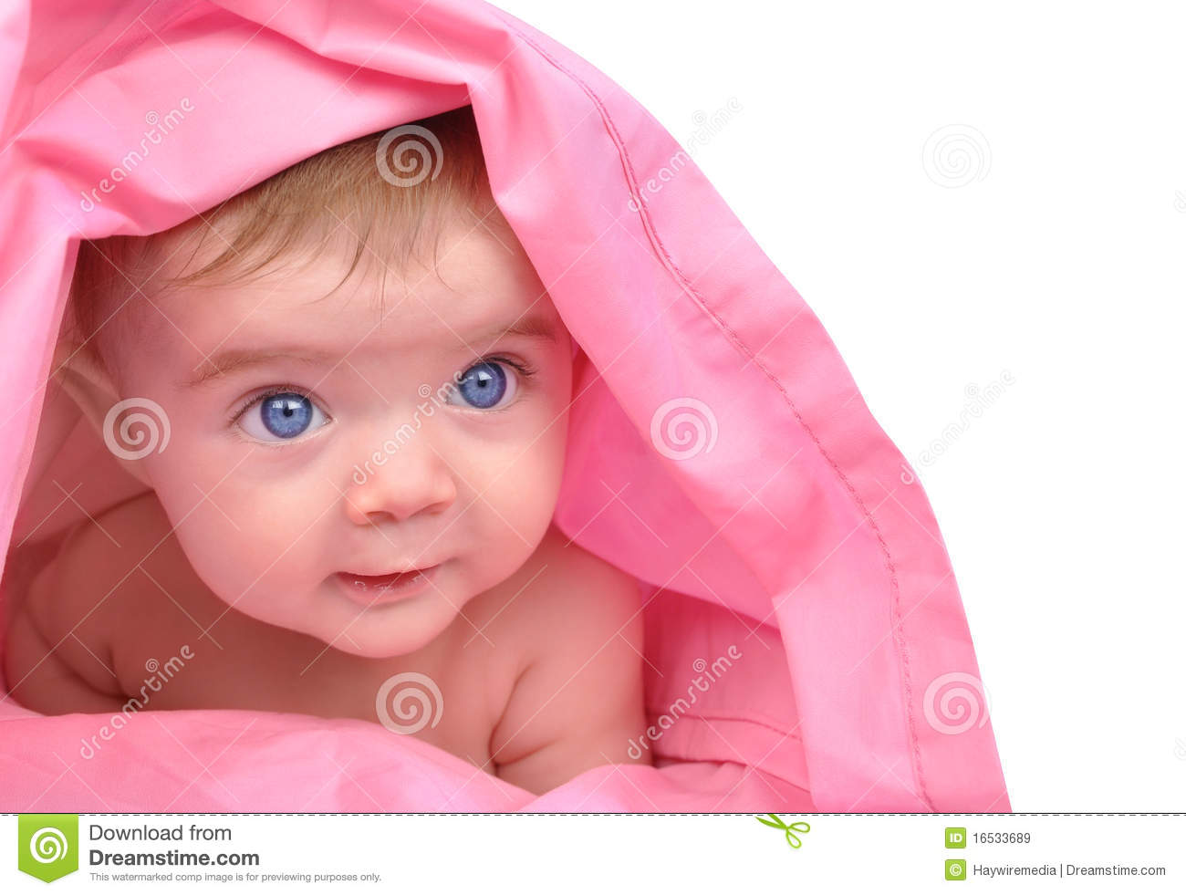 cute little baby staring up on white stock image - image of girl
