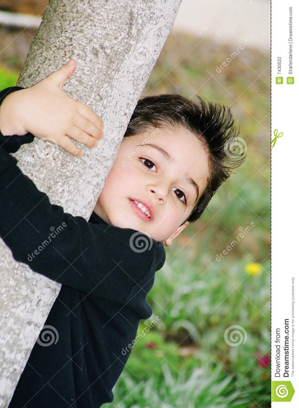 Cute Little Boy Climbing On A Tree Stock Photography