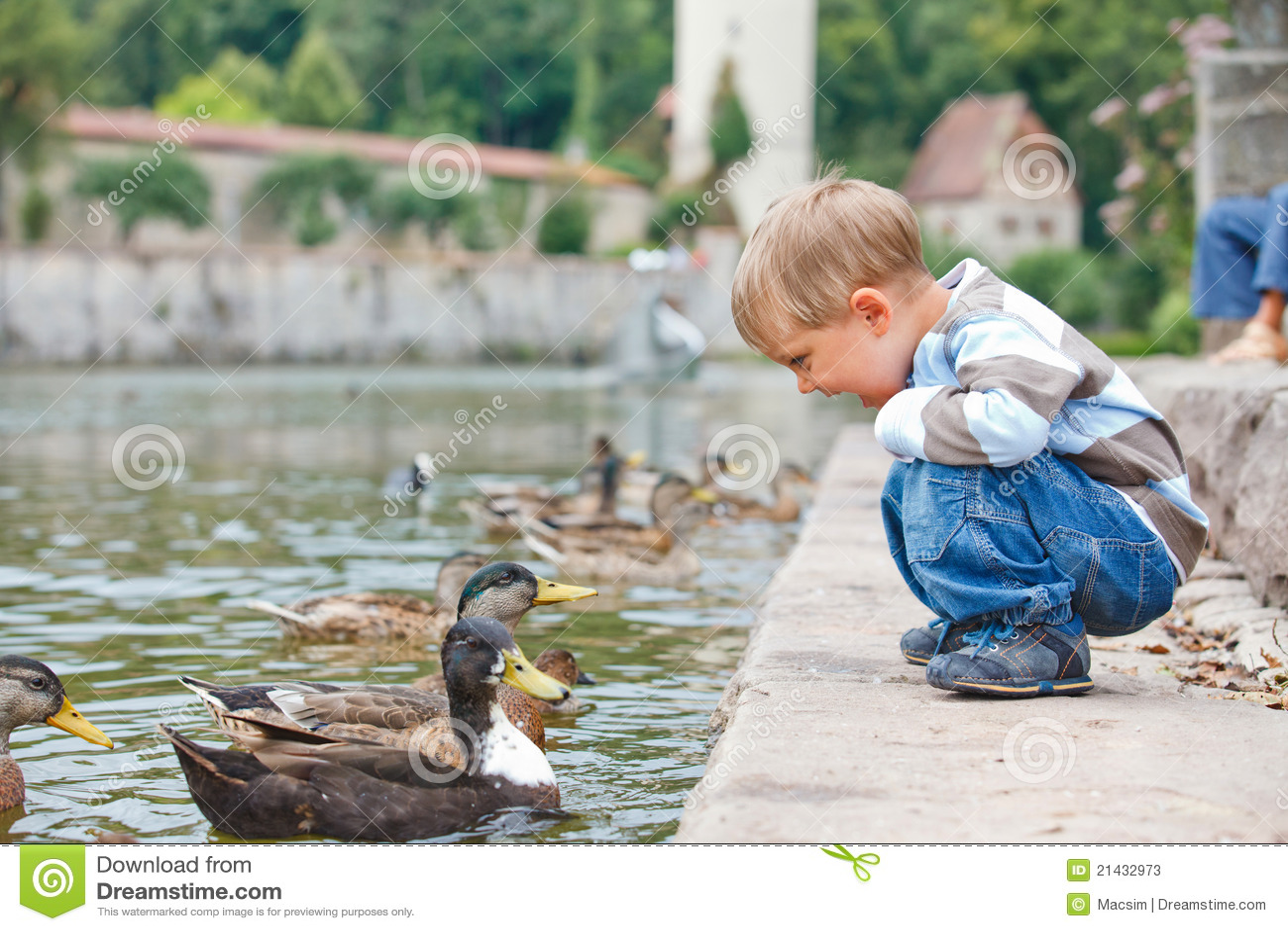 Creampie Feeding the ducks