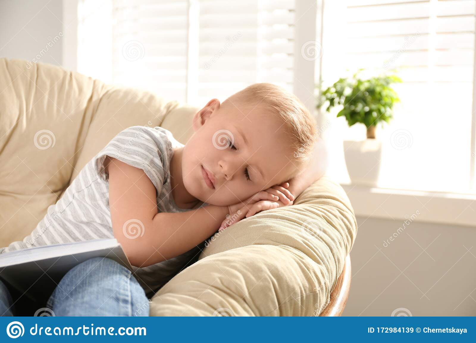 Cute Little Boy Sleeping In Papasan Chair Stock Image Image Of Background Jeans 172984139