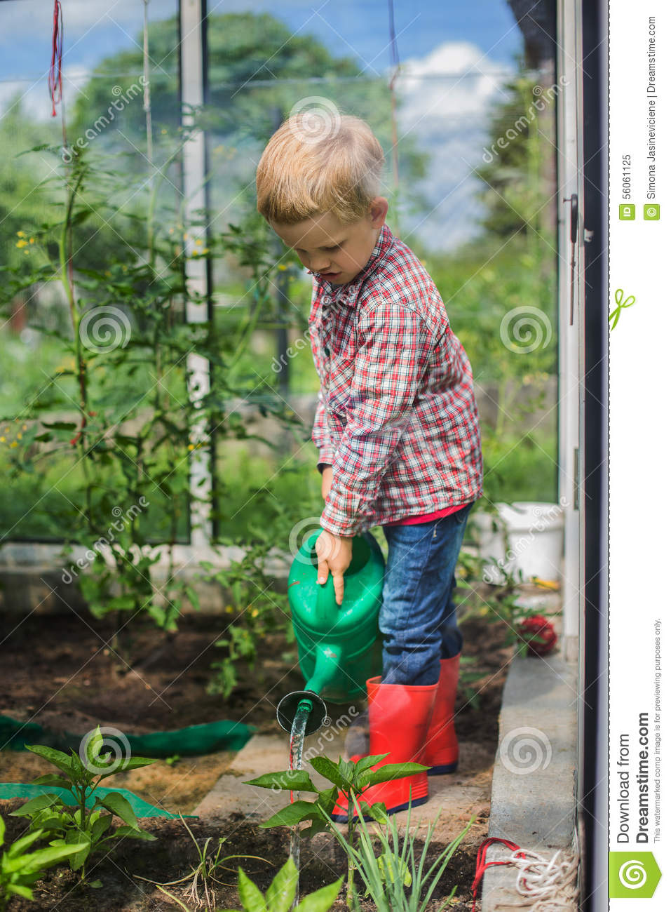 Cute little boy watering vegetables with watering can for Watering vegetable garden
