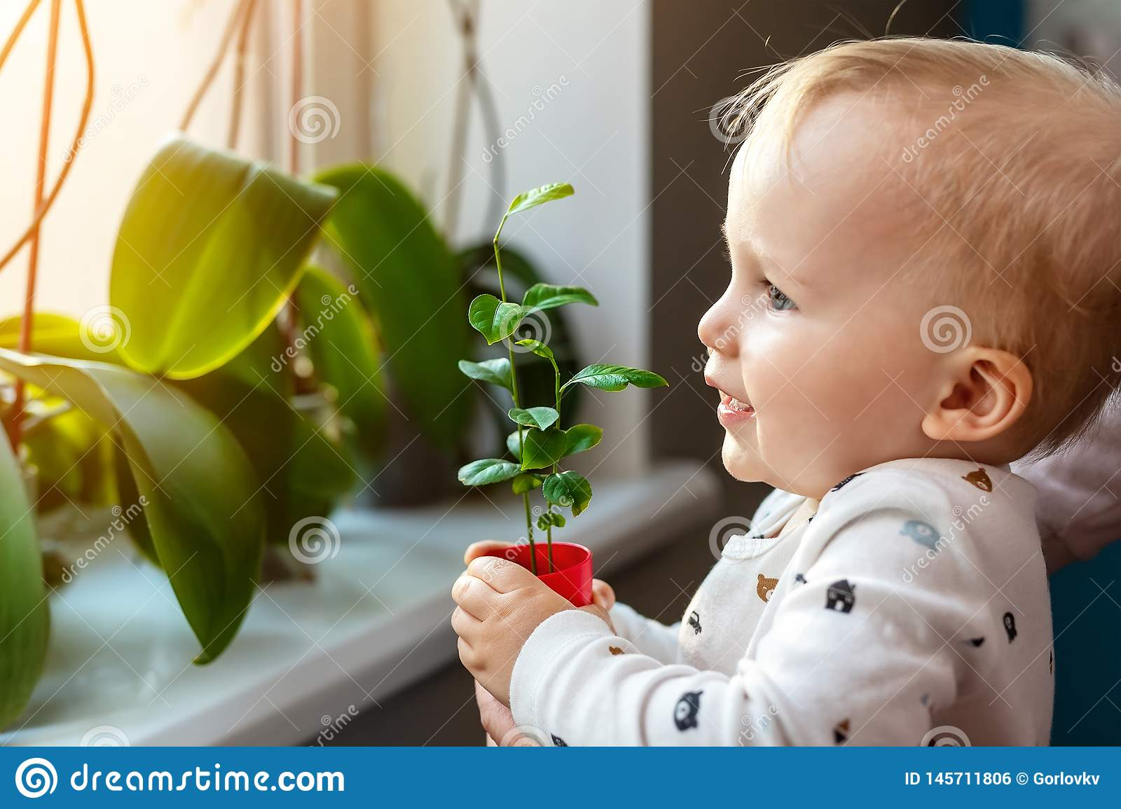 Cute little caucasian toddler boy with mother smiling and having fun holding pot with planted flower near window sill at home.