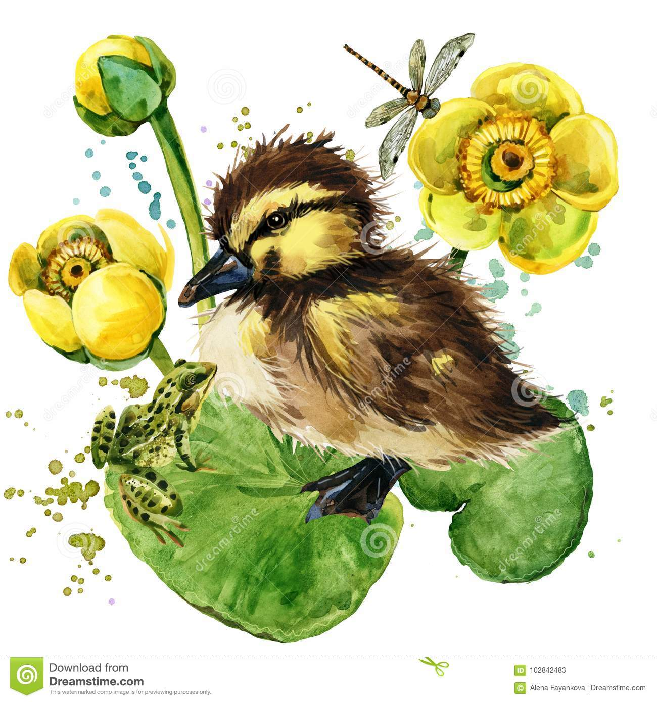 Cute little duckling. yellow water lily watercolor background.