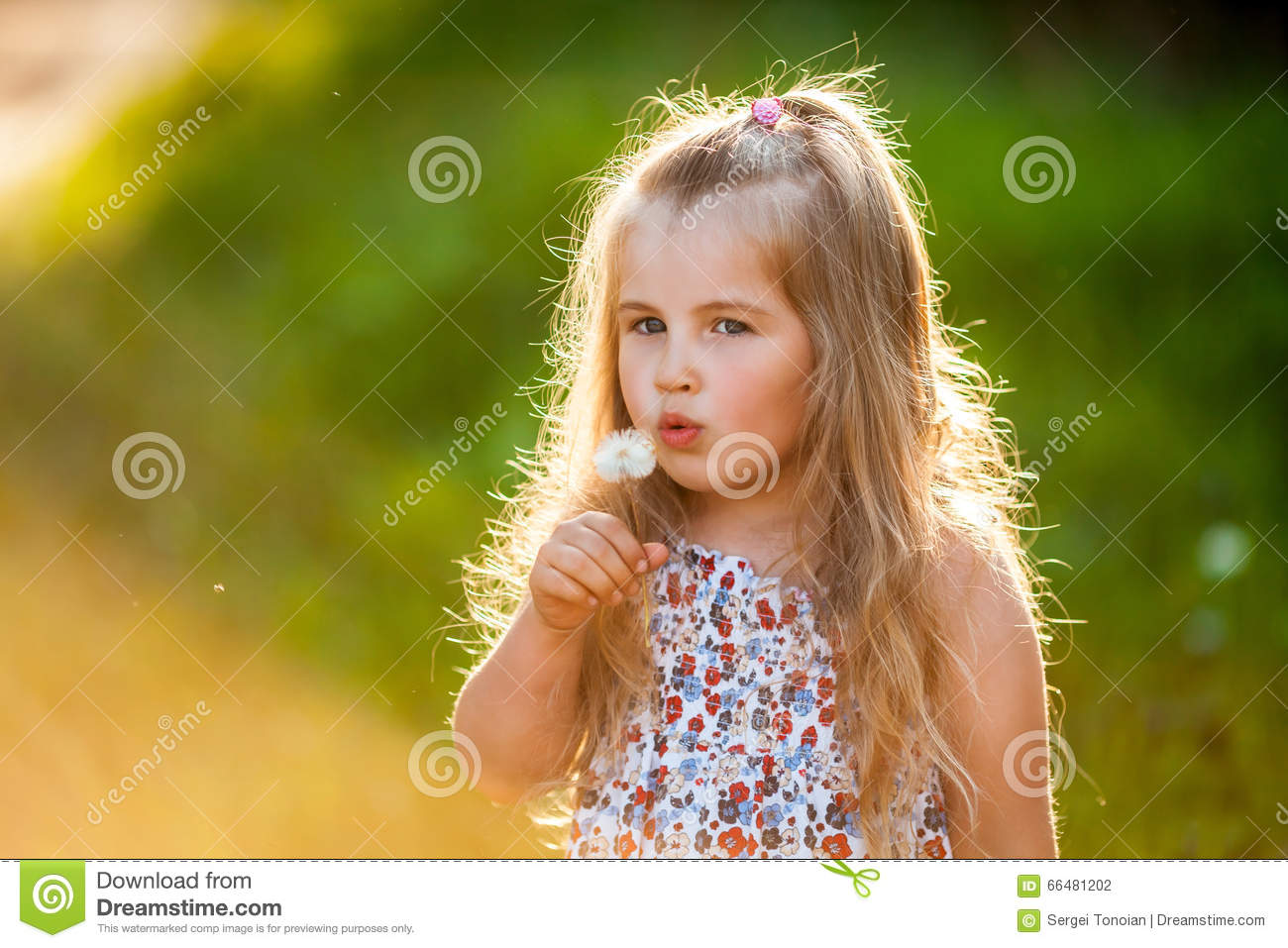 Photo Collection Dandelions Cute Blowing Girl