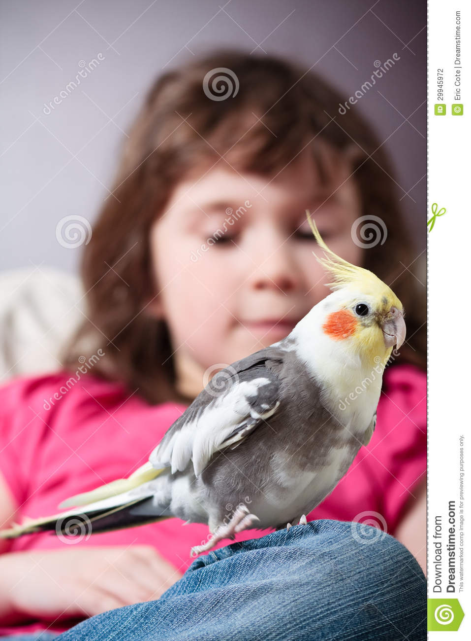 Girl with a cockatiel
