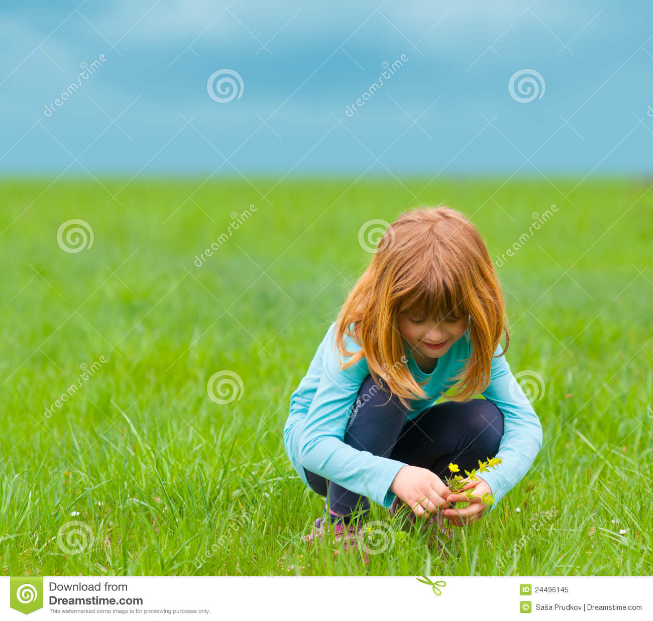 Cute Little Girl Picking Flowers On The Meadow Royalty ...