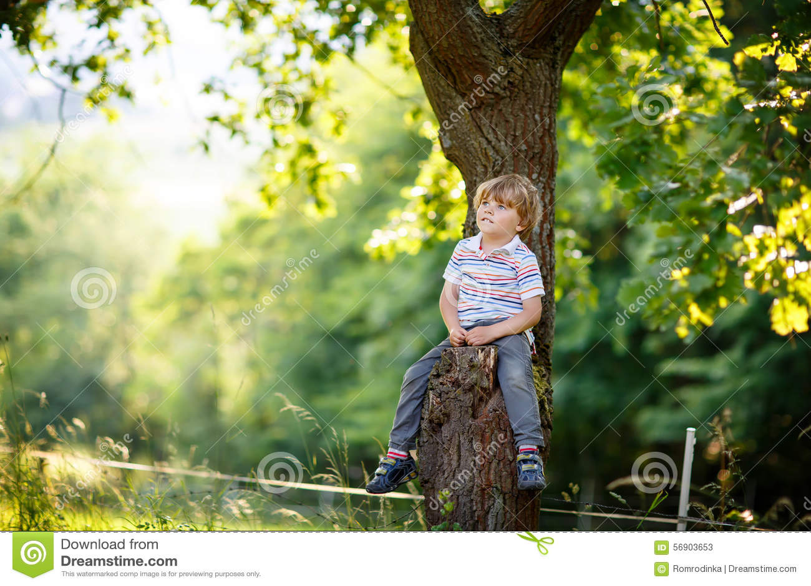 Cute little kid boy enjoying climbing on tree