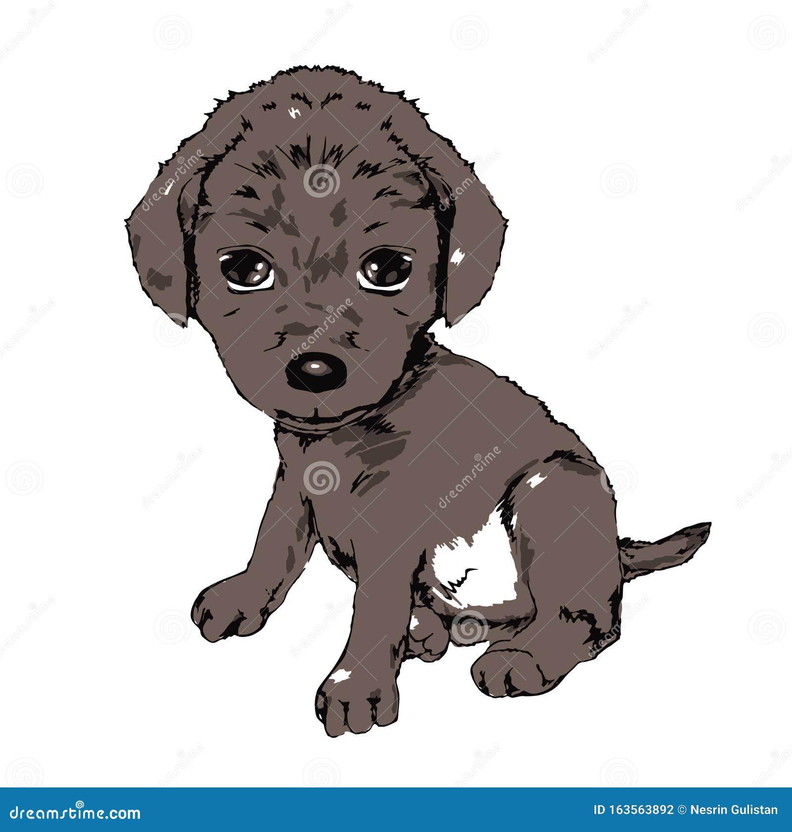 Cute Little Puppy Cute Animal Pet Animal Owner Dog Tiny Cute Animal Cute Faithful Tiny Animal Friendly Illustration Stock Illustration Illustration Of Friendly Little 163563892