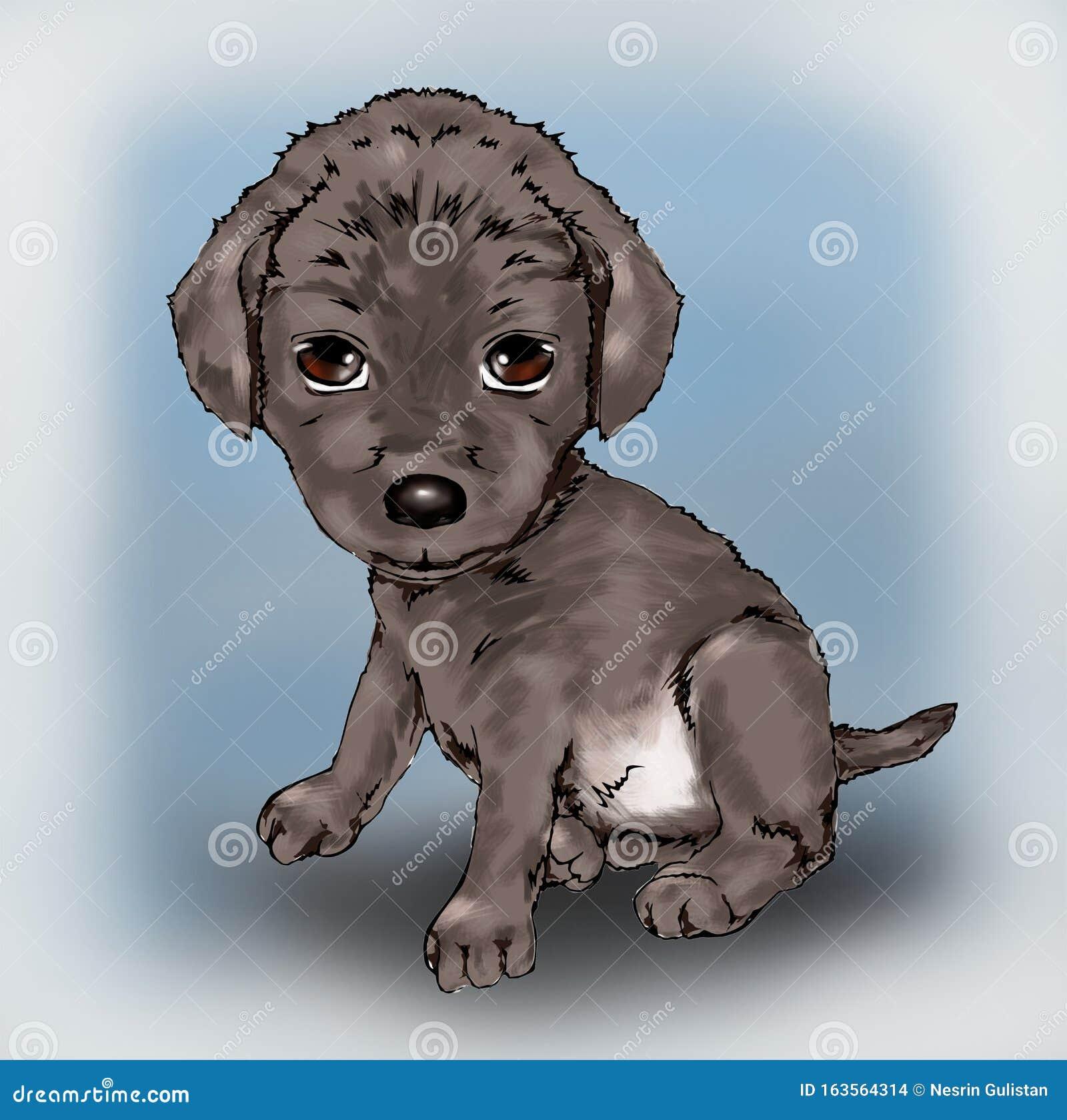 Cute Little Puppy Cute Animal Pet Animal Owner Dog Tiny Cute Animal Cute Faithful Tiny Animal Friendly Illustration Stock Illustration Illustration Of Faithful Friendly 163564314