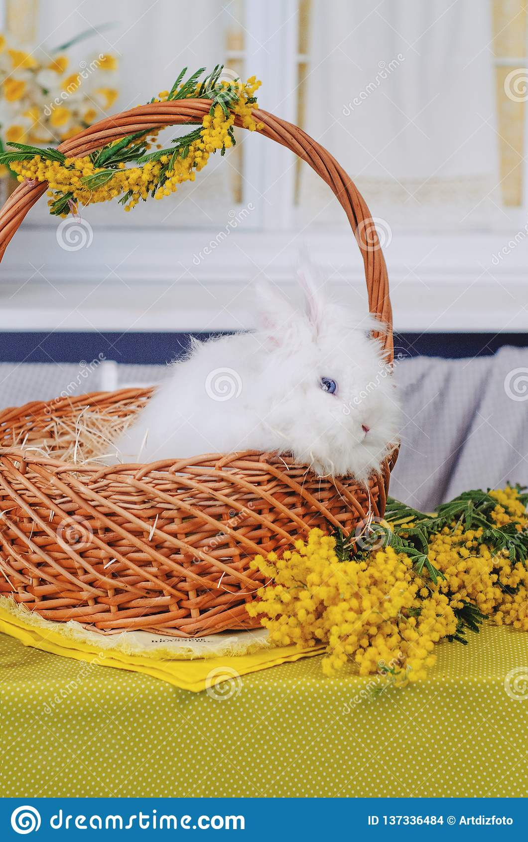 Cute baby bunniy sitting in a wooden basket on the table with flowers