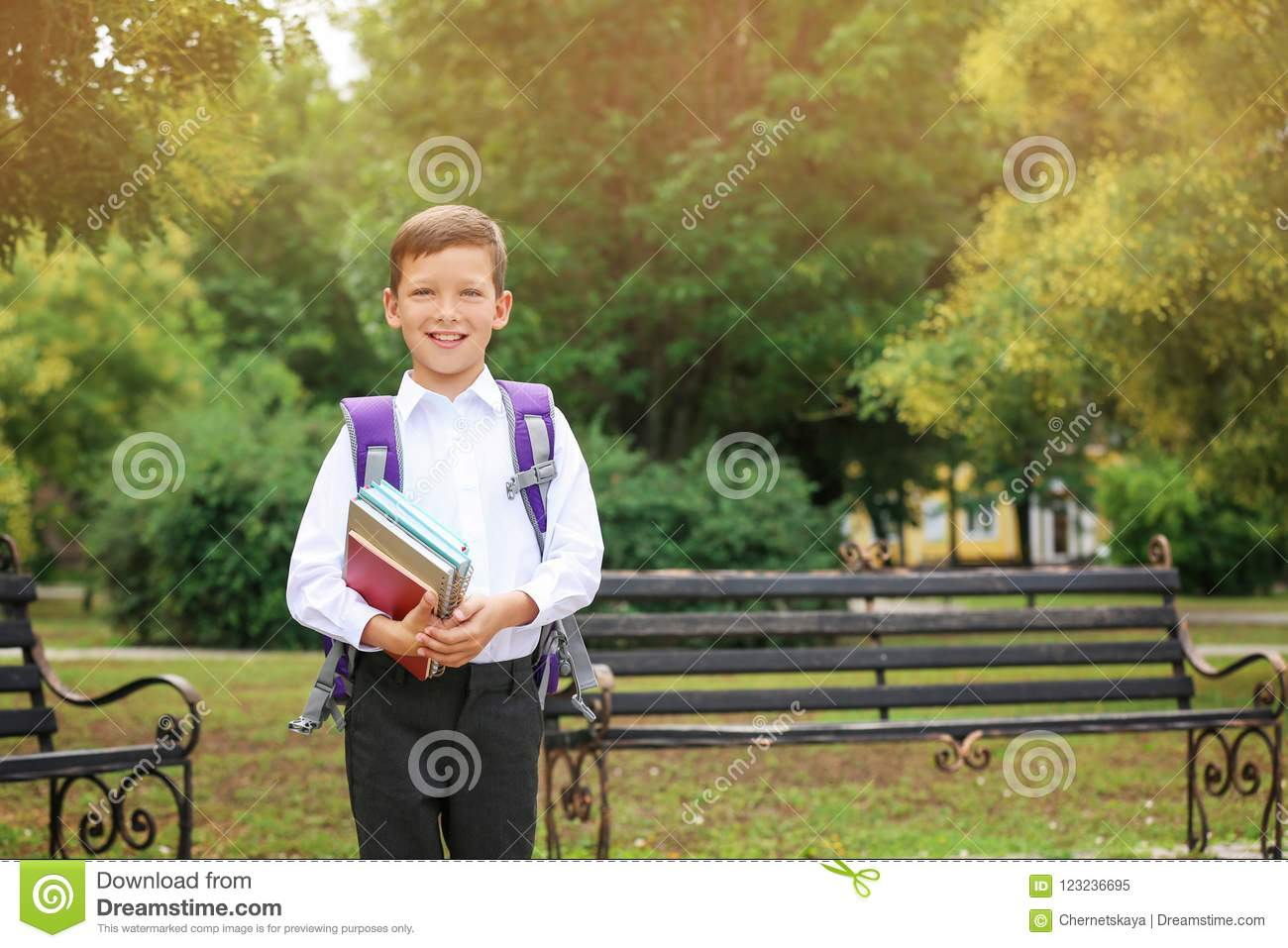Cute little school child with stationery