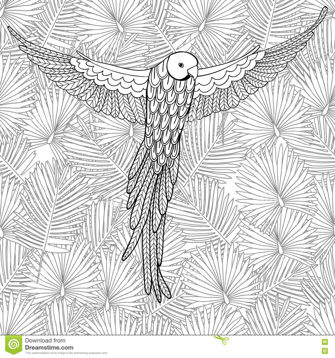Coloring page for adult coloring background Coloring book background