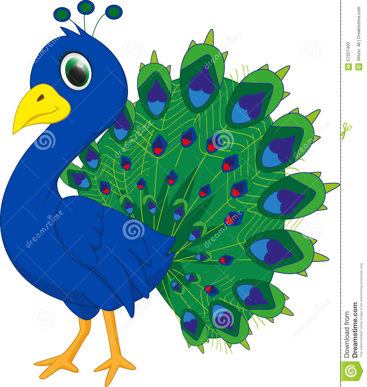 Cute Peacock Cartoon Stock Vector - Image: 57257400