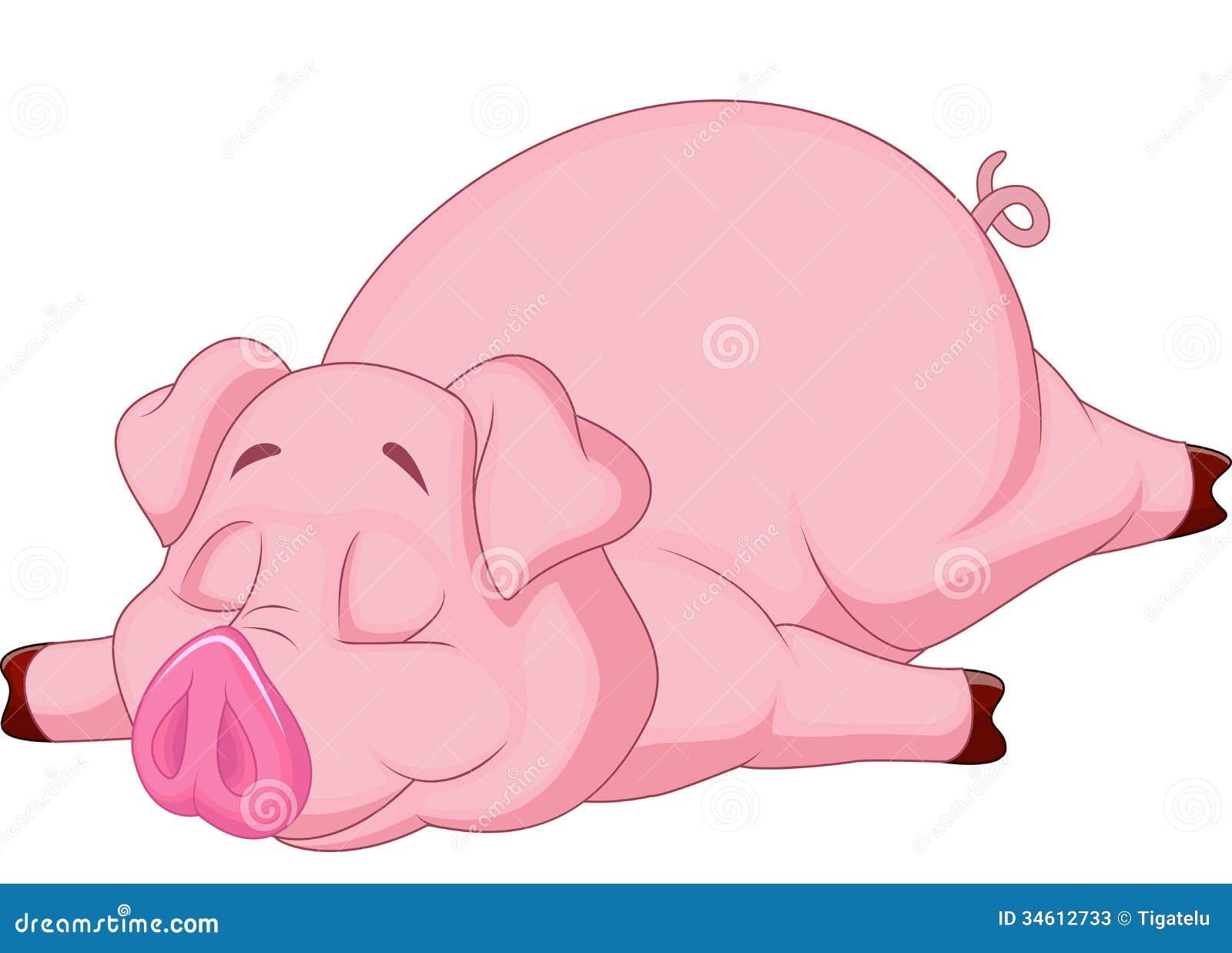 Cute pig cartoon sleeping stock vector illustration of