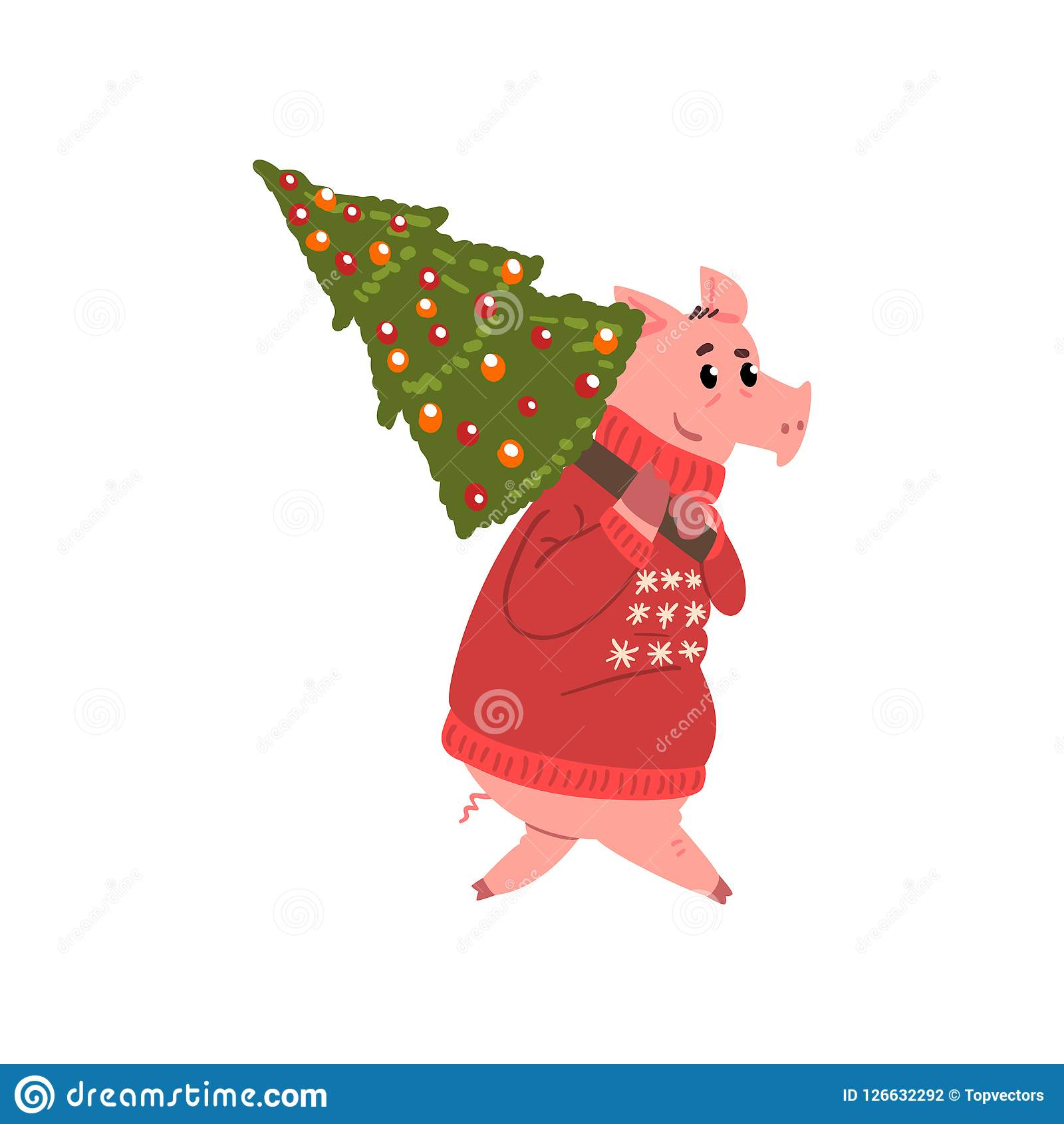 Cute Pig Character Dressed In Red Warm Sweater Carrying Christmas