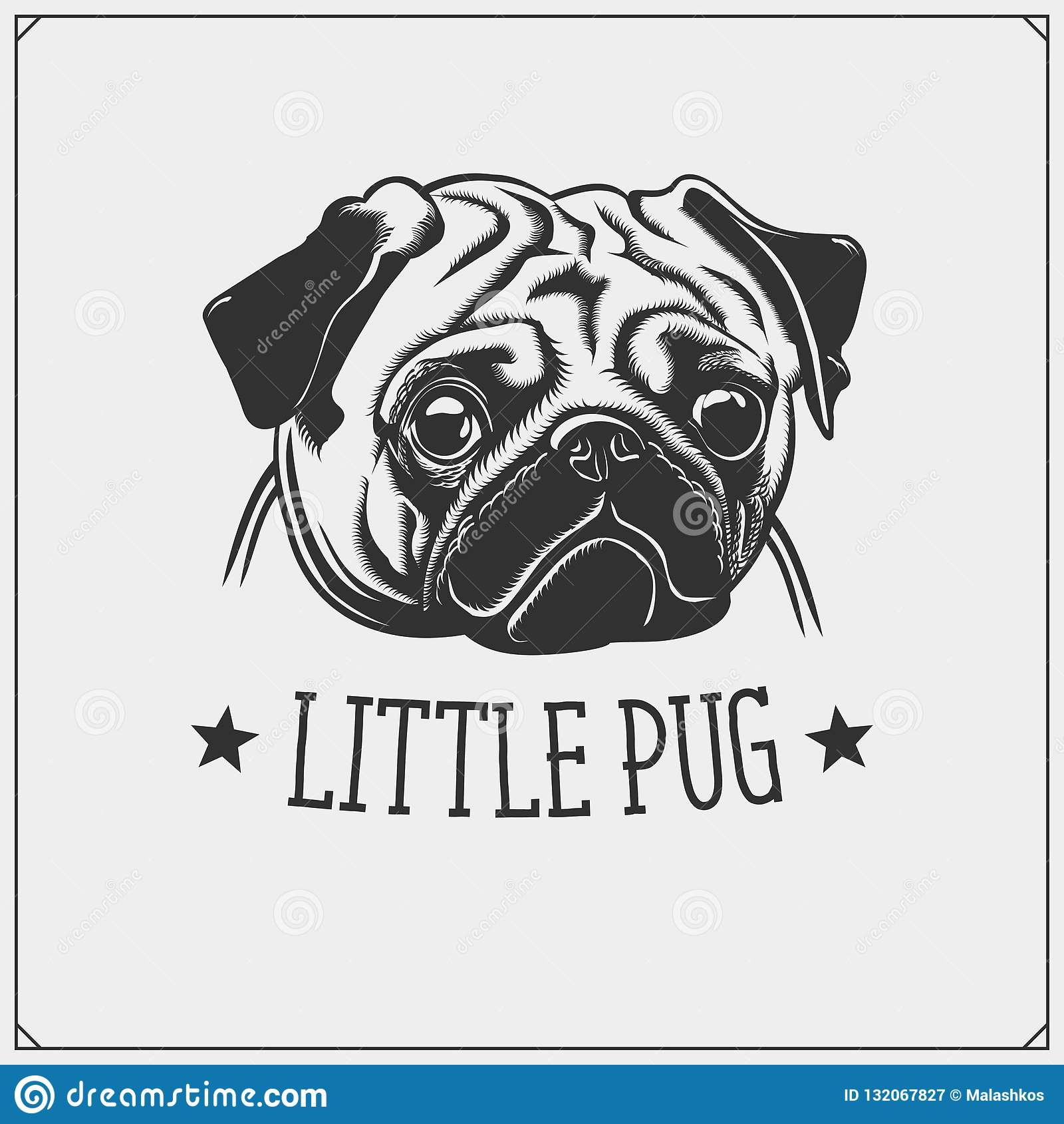 ca0392981ea3 Cute Pug dog portrait. Emblem for Pets Shop. Print design for t-shirts.