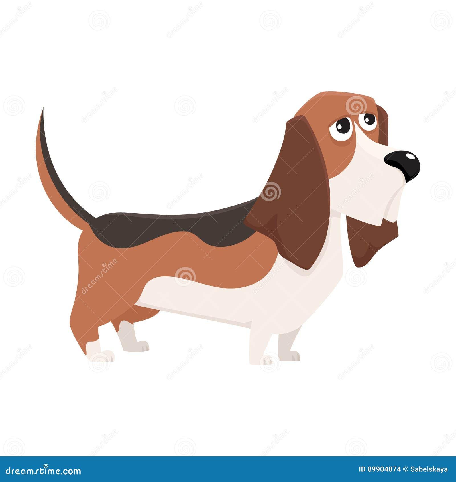 Basset Hound Dog Cartoon Stock ...