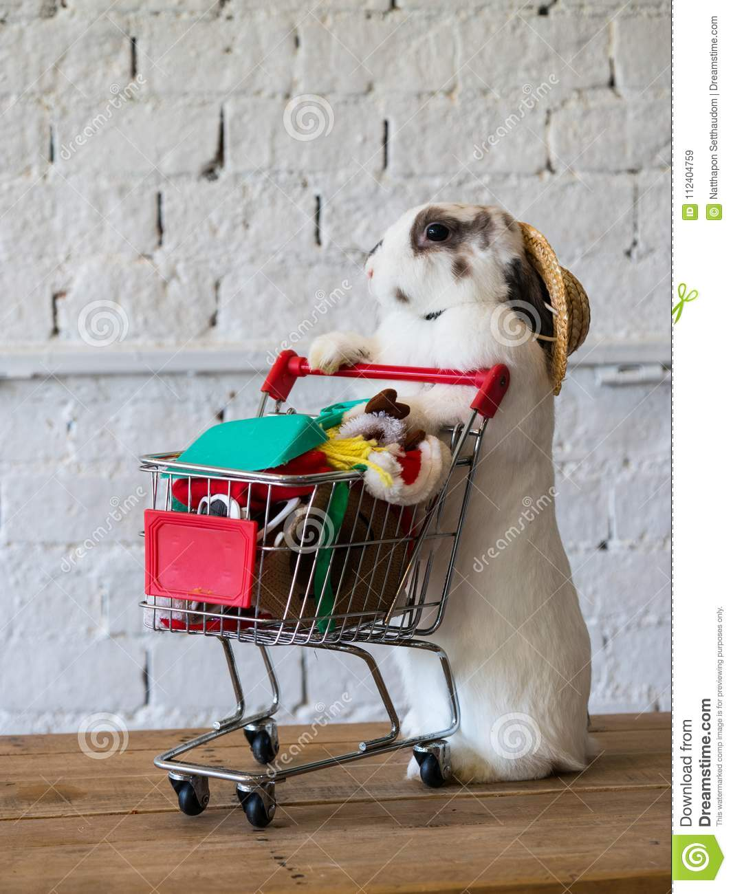 cute rabbit with full shopping cart illustrate a shopping concept