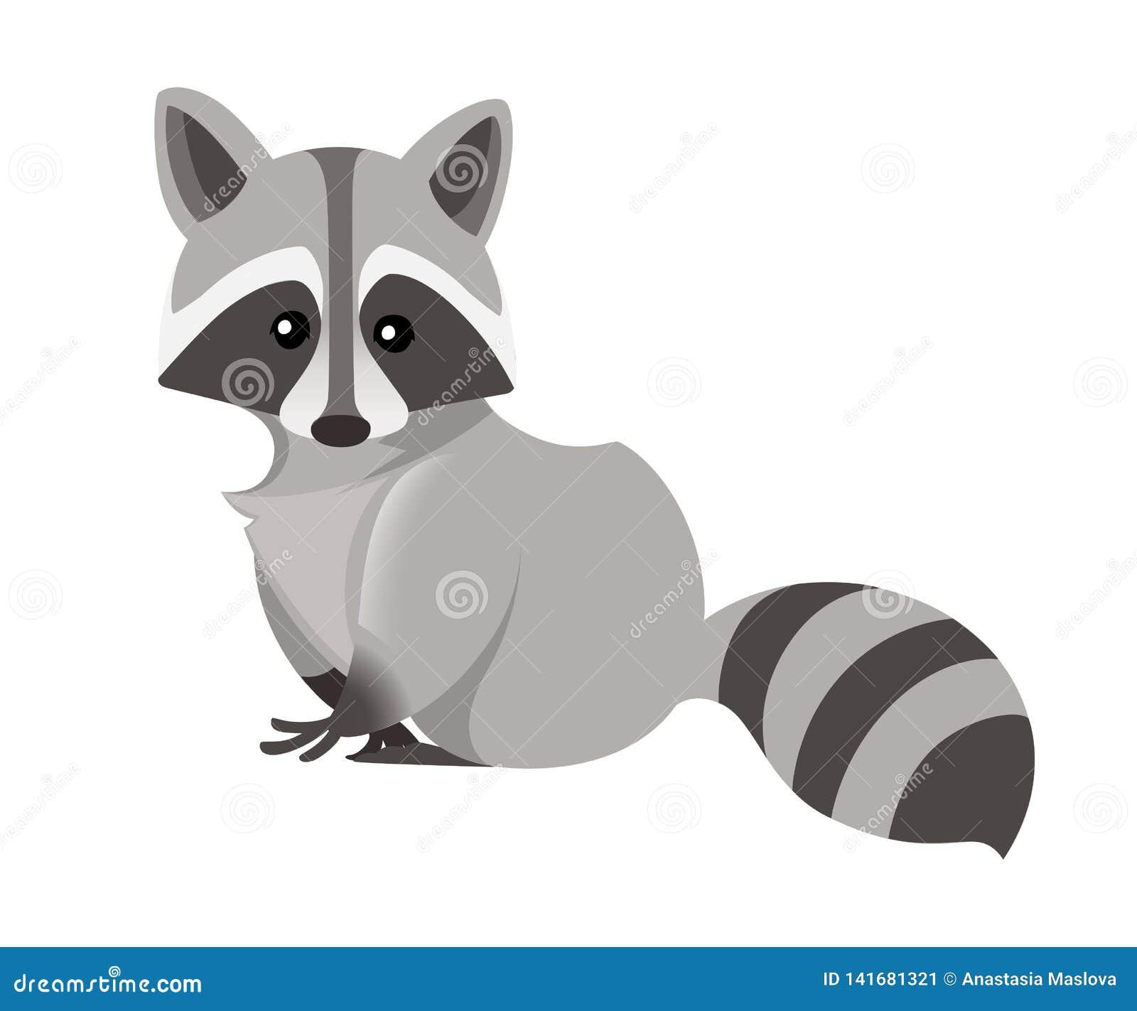 Cute Raccoon  North American Raccoon, Native Mammal  Cartoon Animal