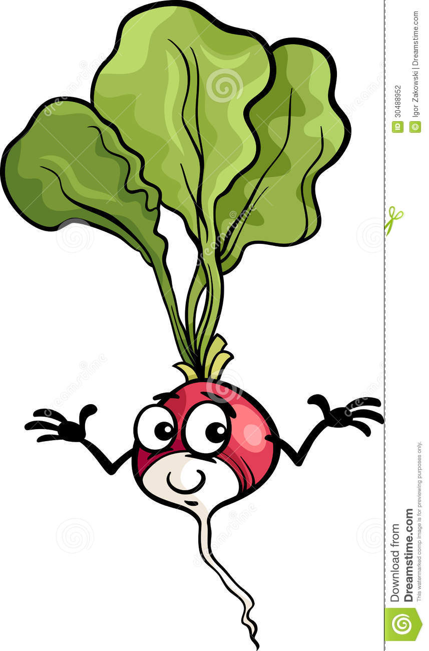 Cute Food Cartoon Cute radish vegetable cartoon