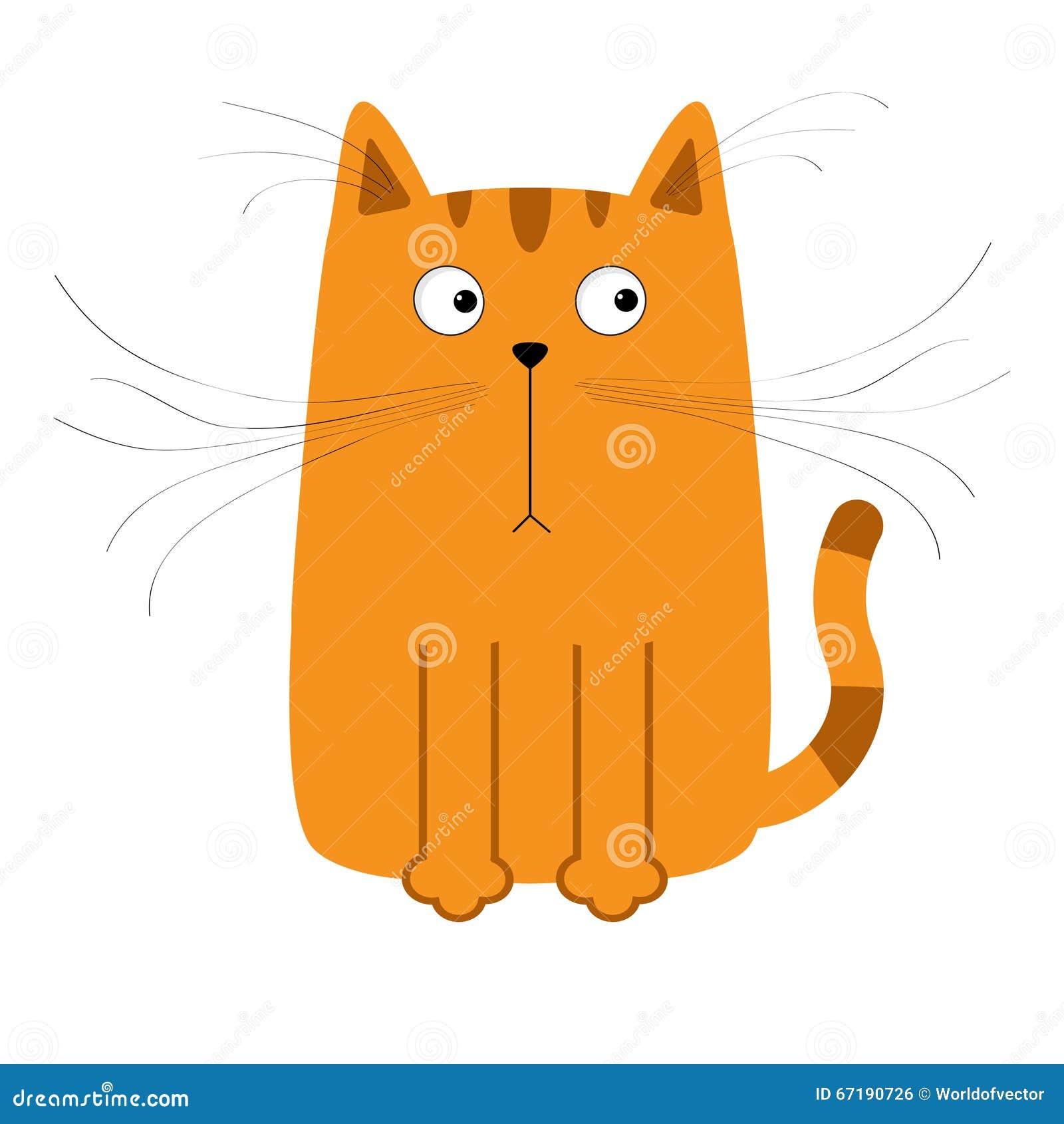 Cat Mustach White Background