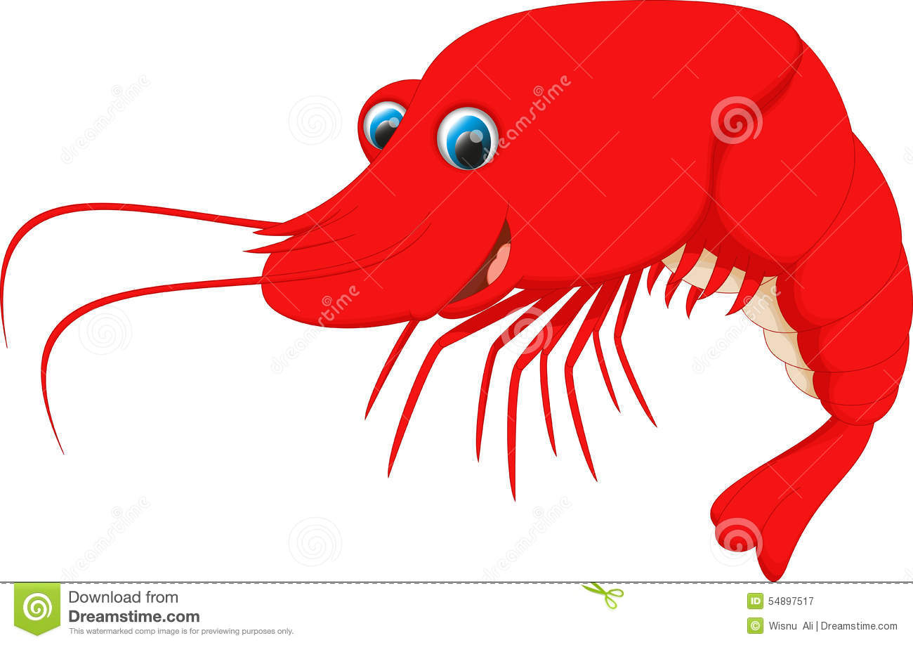 Shrimp Illustration Pictures to Pin on Pinterest - PinsDaddy