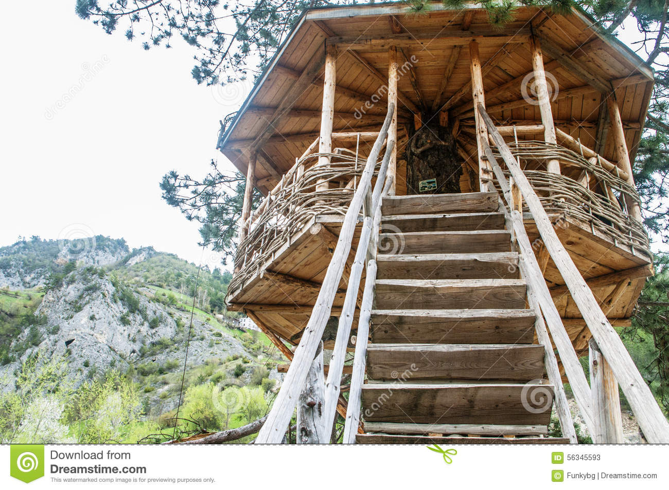Groovy Cute Small Tree House Stock Illustration Image 56345593 Largest Home Design Picture Inspirations Pitcheantrous