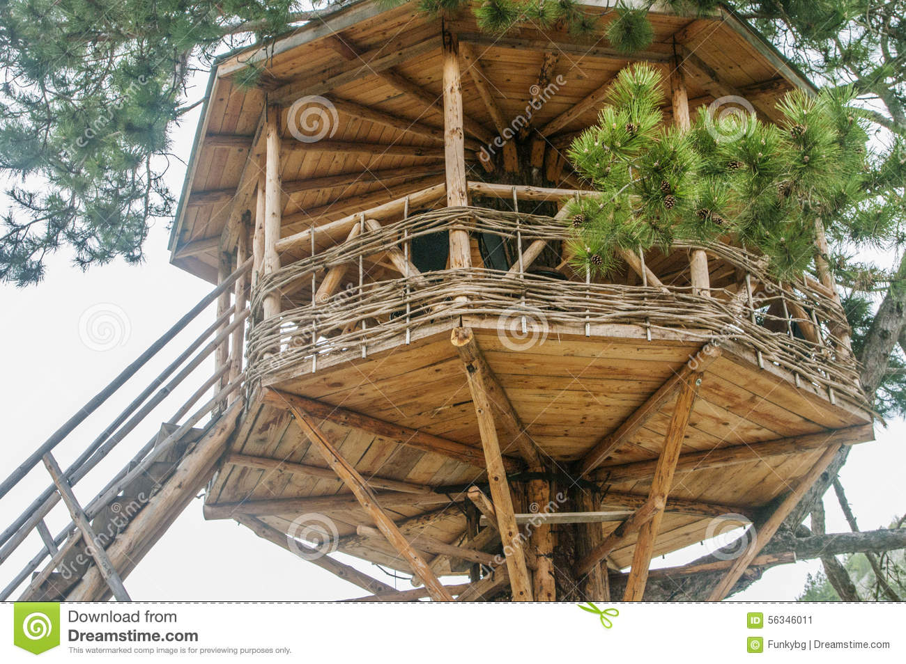 Cute small tree house stock image image of ladder garden for Small tree house