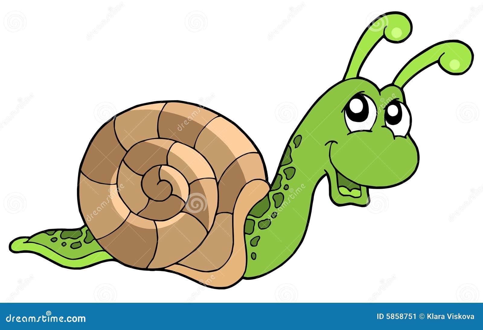 Cute snail stock image image 5858751 - Clipart escargot ...