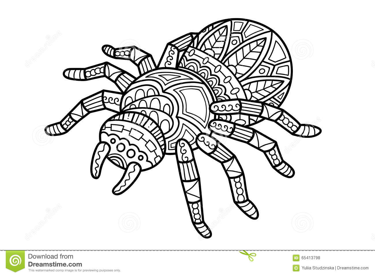 Cute Spider Stock Vector Illustration Of Contour