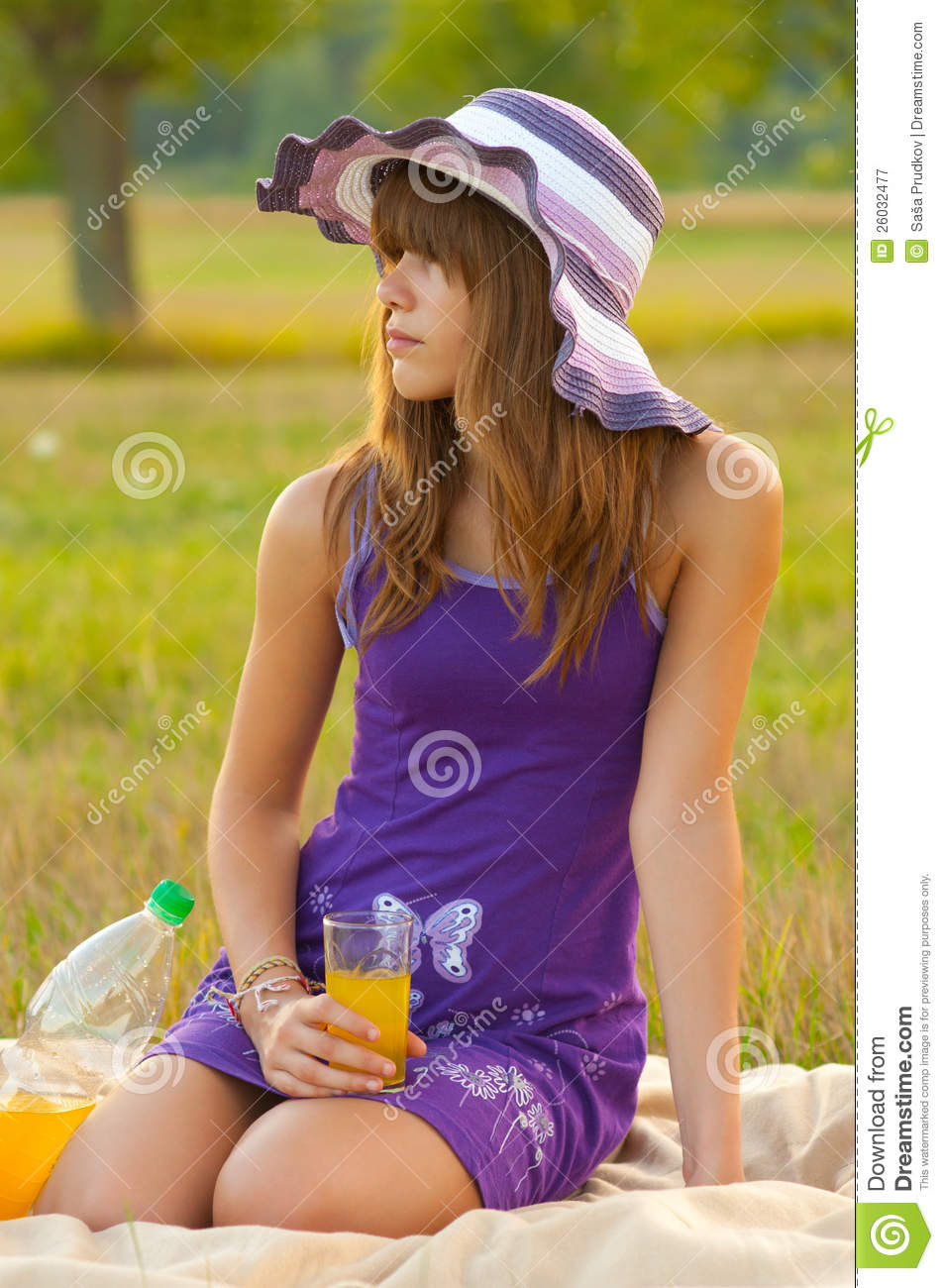 Cute Teenage Girl On The Picnic Royalty Free Stock