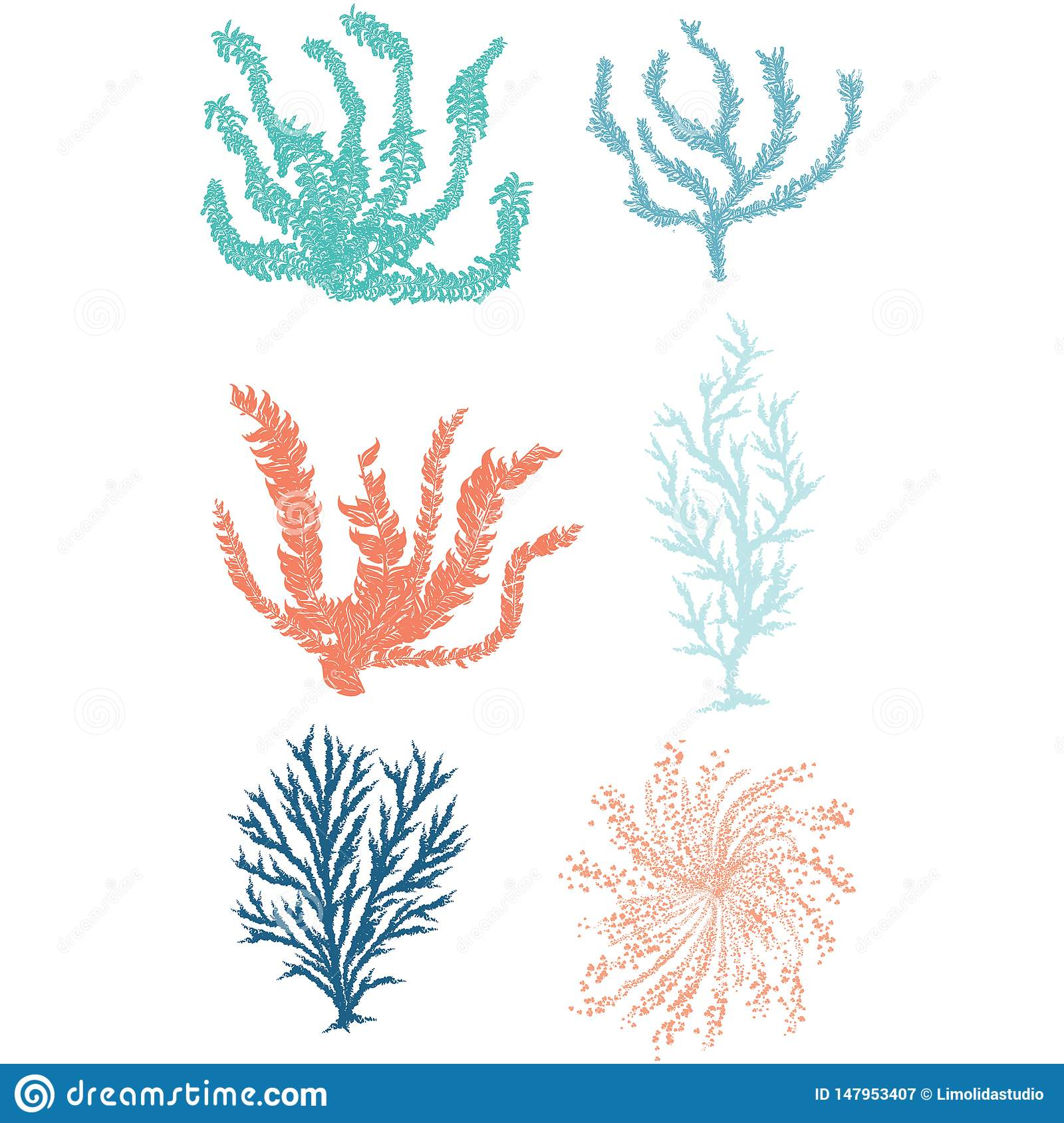 Cute underwater seaweed cartoon vector illustration motif set. Hand drawn isolated coral reef elements clipart for nautical