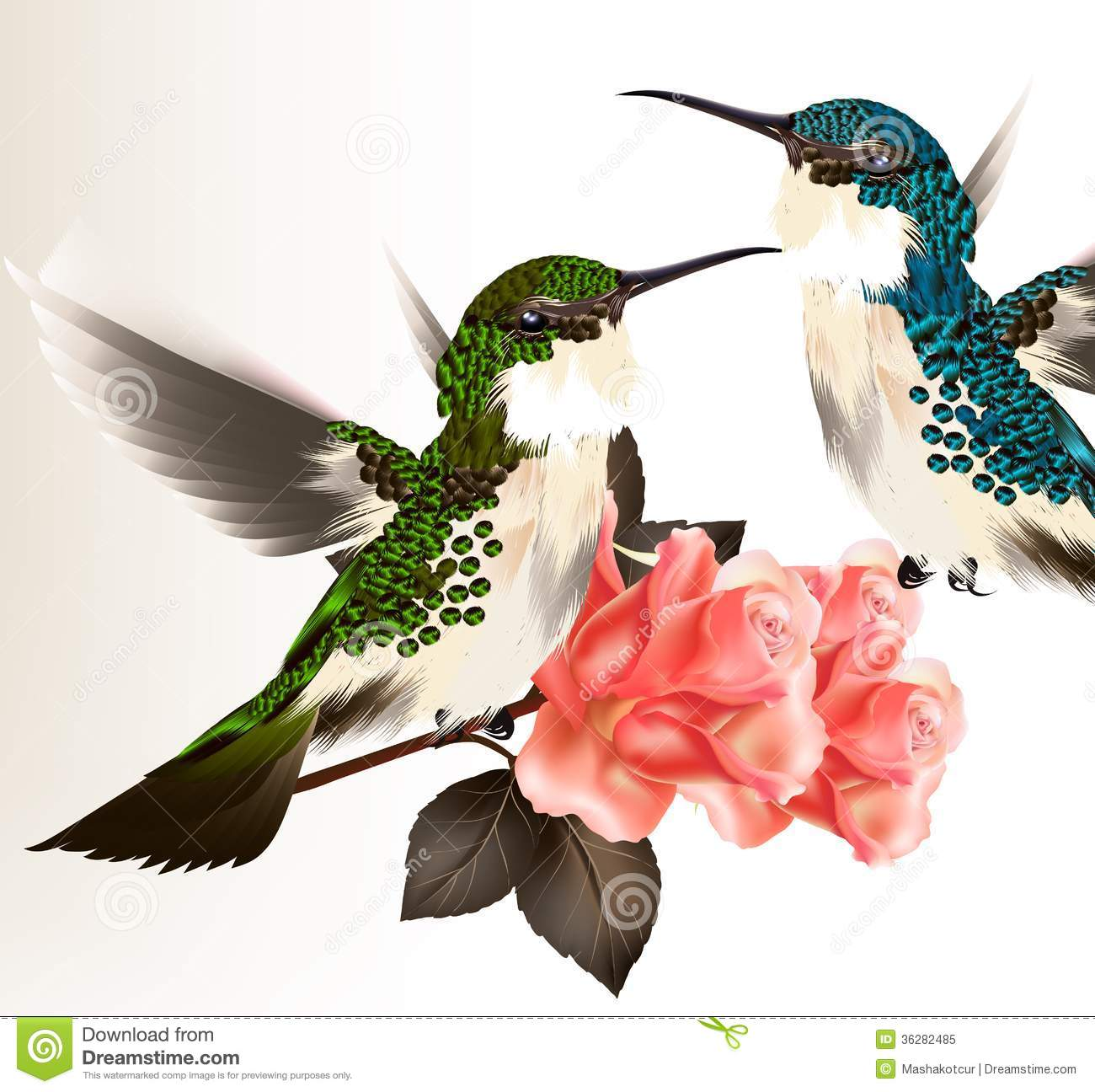 Cute Valentine Card With Couple Of Humming Bird And Roses