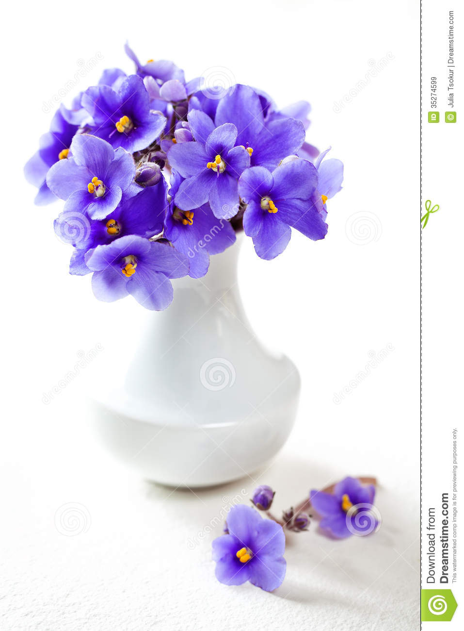 Cute Violet Flowers Royalty Free Stock Images Image 35274599
