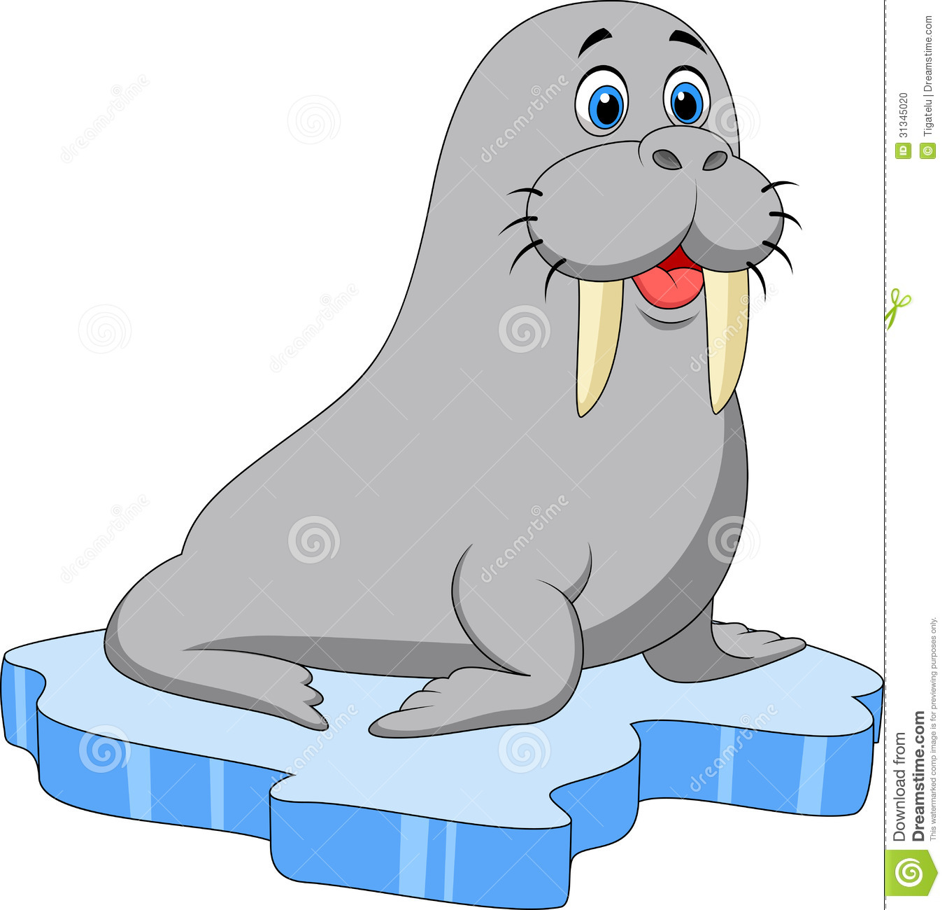 Fat walrus cartoon - photo#7
